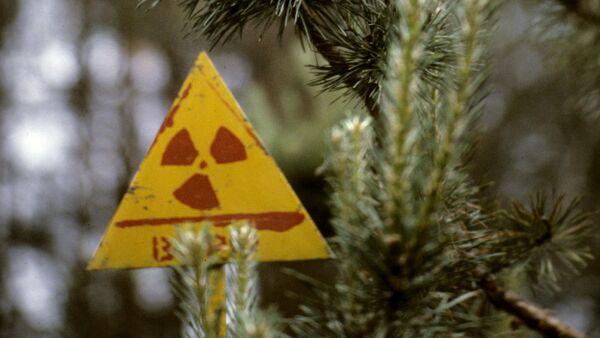 Černobiljska nuklearna elektrana - Sputnik Srbija