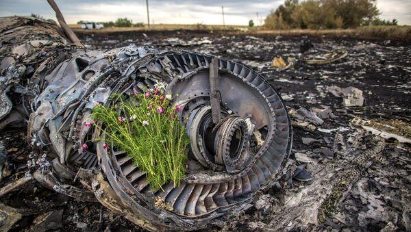 Остаци малезијског авиона Боинг 777 који се срушио изнад Доњецке области - Sputnik Србија