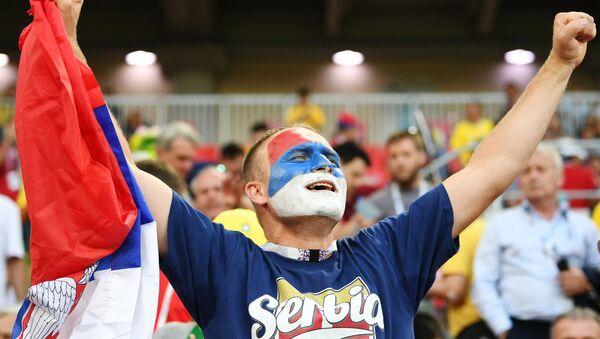 Navijač Srbije na utakmici Svetskog prvenstva u fudbalu između reprezentacija Srbije i Brazila - Sputnik Srbija