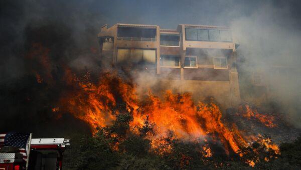 Veliki požar u severnoj Kaliforniji - Sputnik Srbija
