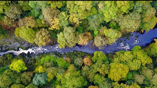 Reka koja melje - Sputnik Srbija