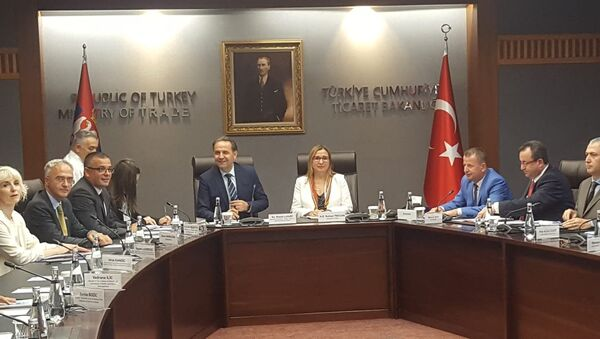 Ministri Rasim Ljajić i Branislav Nedimović sa turskom ministarkom trgovine Ruhsar Pekdžan u Ankari - Sputnik Srbija
