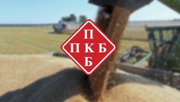 PKB - logo - Sputnik Srbija