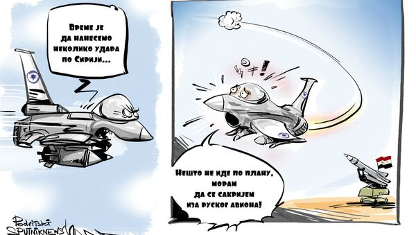 Ko je kriv za obaranje ruskog aviona? - Sputnik Srbija
