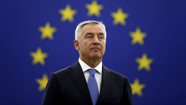 Мило Ђукановић у Европском парламетну - Sputnik Србија