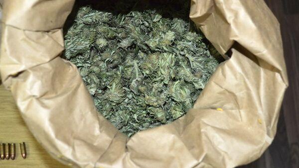 Marihuana - Sputnik Srbija