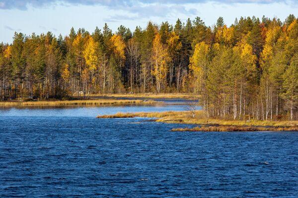 Reka Segeža u Kareliji - Sputnik Srbija