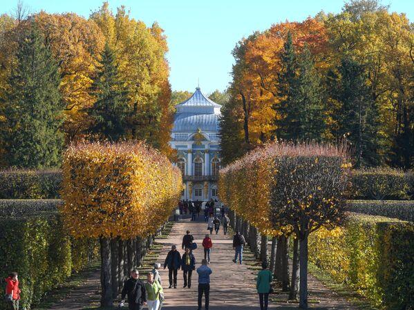 Jesen u Carskom selu u Sankt Peterburgu - Sputnik Srbija