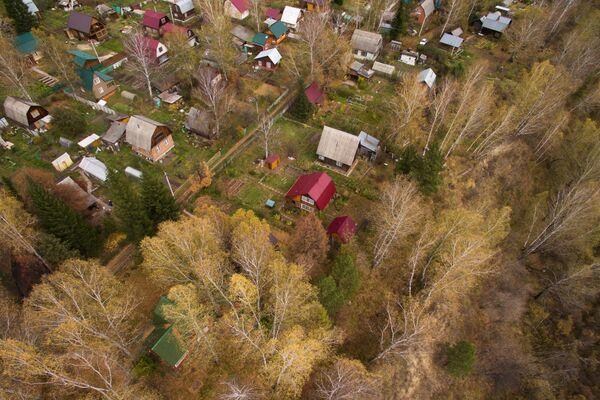 Jesen u Novosibirskoj oblasti - Sputnik Srbija