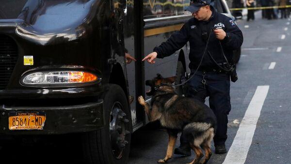 Њујоршки полицајац проверава возило са псом трагачем бомби испред зграде Тајм Ворнер центра након што је у седишту Си-ен-ена пронађен сумњив пакет. - Sputnik Србија