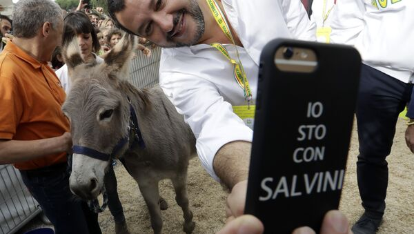 Italijanski ministar unutrašnjih poslova i zamenik premijera Mateo Salvini slika selfi sa magarcem u pozadini. - Sputnik Srbija
