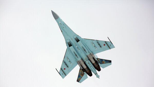 Вишенаменски ловац Су-27 - Sputnik Србија
