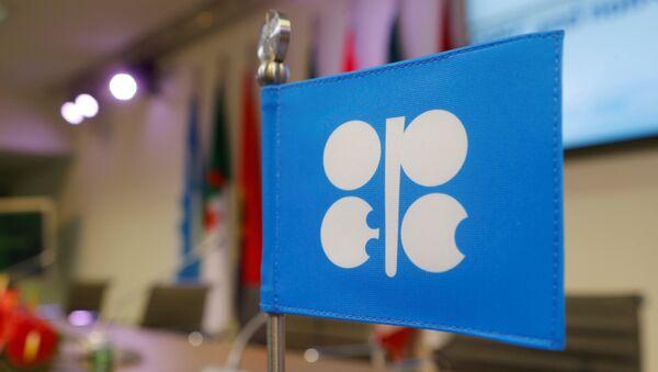 Застава са логом Организације земаља извозника нафте (OПЕК) на конференцији у Бечу - Sputnik Србија