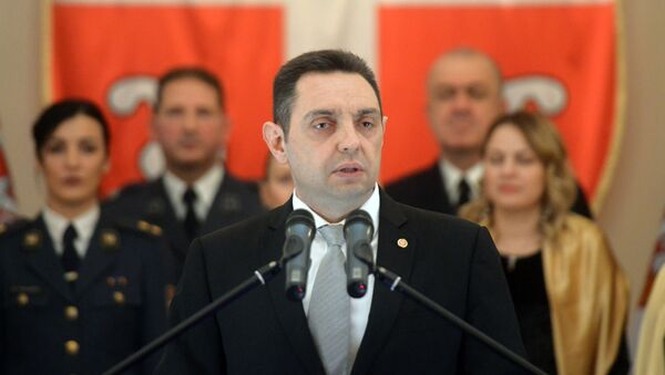 Aleksandar Vulin na prijemu - Sputnik Srbija