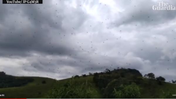Pauci padaju sa neba - Sputnik Srbija