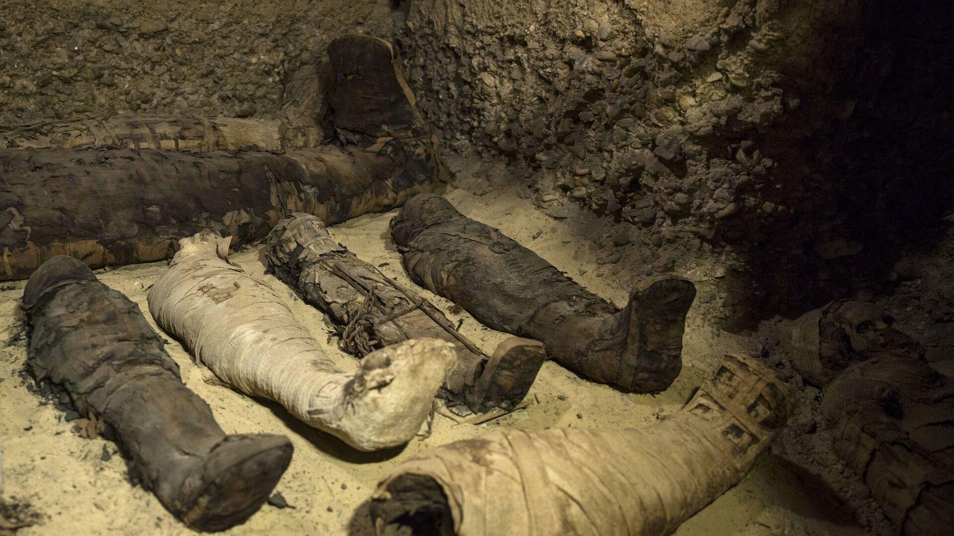 Фараонска гробница са 50 мумија у граду Миња - Sputnik Србија, 1920, 29.09.2021