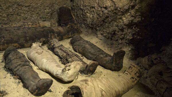 Faraonska grobnica sa 50 mumija u gradu Minja - Sputnik Srbija