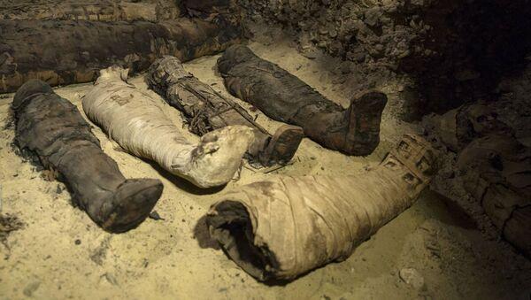 Фараонска гробница са 50 мумија у граду Миња - Sputnik Србија