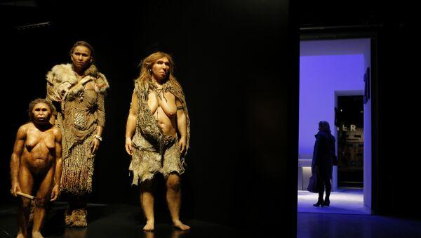 Žene homo sapijensa i neandertalca u Muzeju antropologije u Lionu - Sputnik Srbija