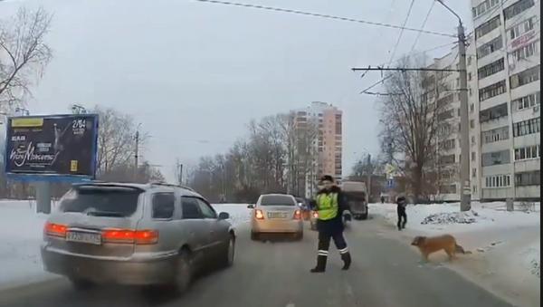 Полицајац зауставио саобраћај да пас пређе улицу - Sputnik Србија