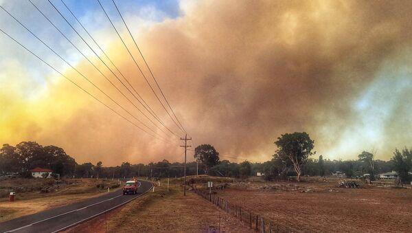 Veliki požar u Australiji - Sputnik Srbija