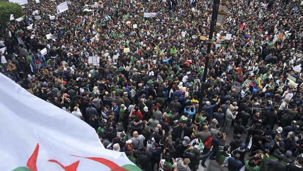 Алжир, протести - Sputnik Србија