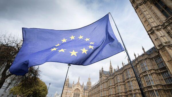 Zastava EU u Lonodnu pored zgrade parlamenta - Sputnik Srbija