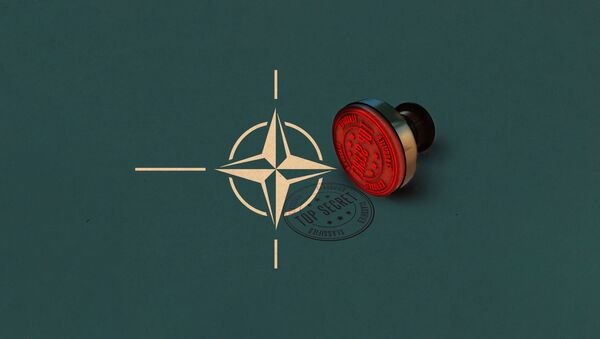 НАТО, строго пов - илустрација - Sputnik Србија