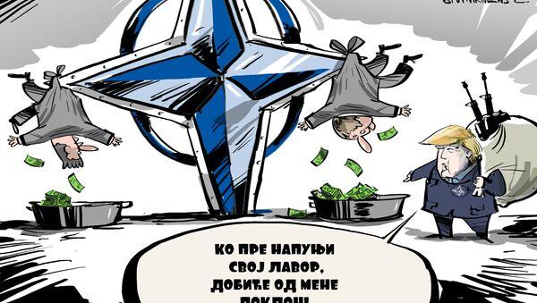 Клуб купаца америчког оружја - Sputnik Србија
