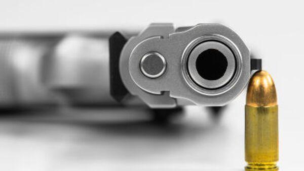 Metak i pištolj - Sputnik Srbija