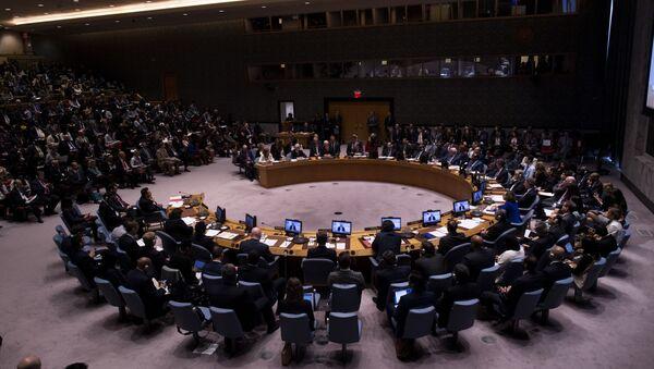 Zasedanje Saveta bezbednosti Ujedinjenih nacija u Njujorku - Sputnik Srbija