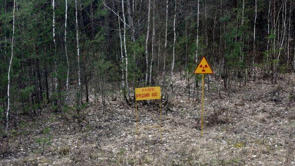 Чернобил - Sputnik Србија