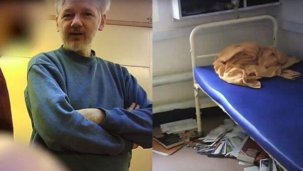 Џулијан Асанж у затвору - Sputnik Србија