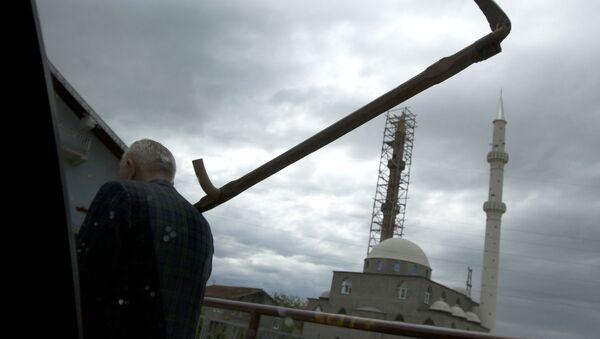 Kosač prolazi ulicom u Novom Pazaru. U pozadini se vidi džamija. - Sputnik Srbija