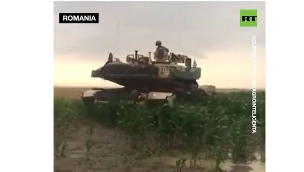 Тенком на кукуруз - Sputnik Србија