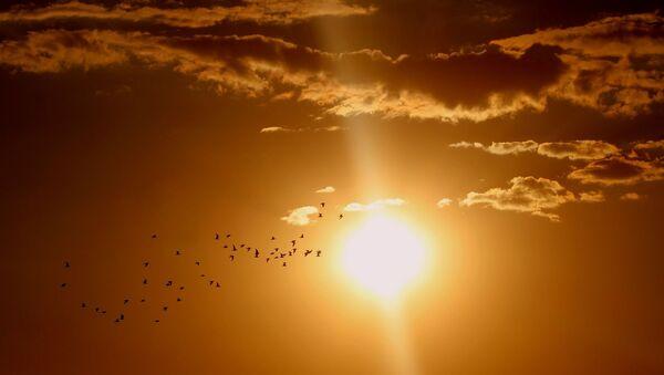 Сунце - Sputnik Србија