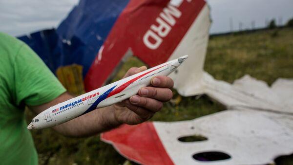 Човек показује модел малезијског авиона Боинг 777 који је оборен изнад Донбаса - Sputnik Србија