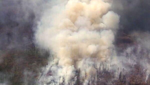 Gašenje požara u Irkutskoj oblasti Rusije - Sputnik Srbija