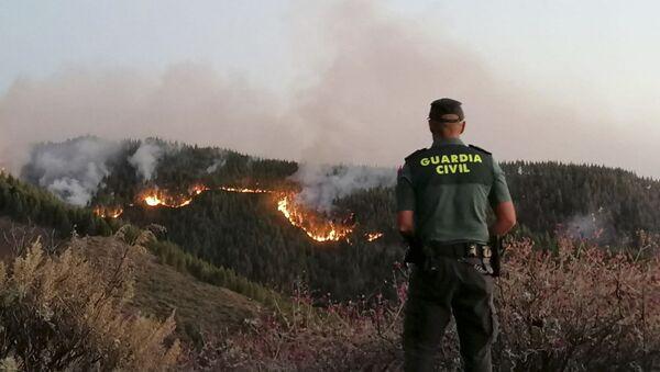 Пожар на Гран Канарији - Sputnik Србија