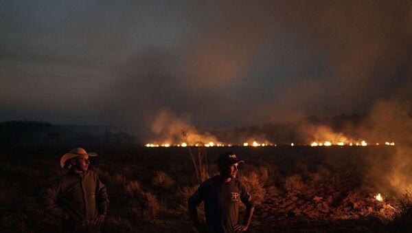 Пожар у Амазонији - Sputnik Србија