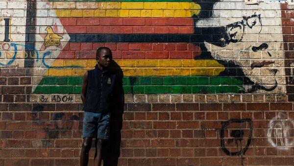 Mugabe mural - Sputnik Srbija