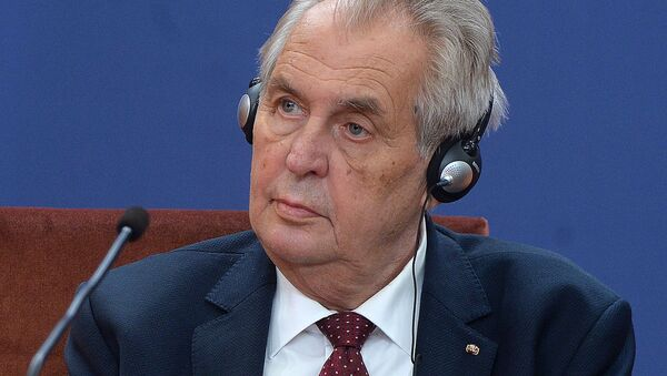 Милош Земан - Sputnik Србија