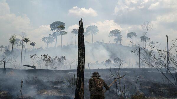 Amazonija u plamenu - najveći požari od 2010. zahvatili su ovu regiju u leto ove godine, što je podstaklo zabrinutost vezano za klimatske promene. - Sputnik Srbija
