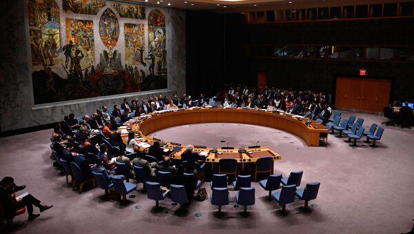 Zasedanje Saveta bezbednosti UN - Sputnik Srbija