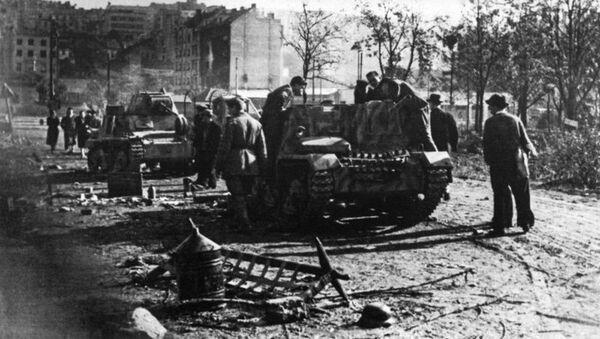 Уништена немачка борна кола  - Sputnik Србија