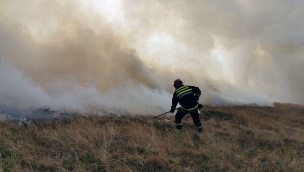 Gašenje požara na Staroj planini - Sputnik Srbija