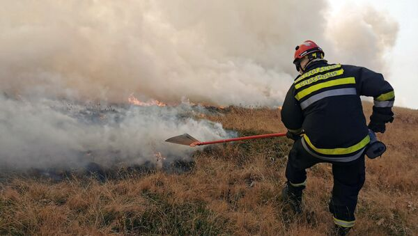 Požar se gasi u četiri sektora na teritoriji Bosilegrada, Trgovišta, Surdulice i Čestelina - Sputnik Srbija