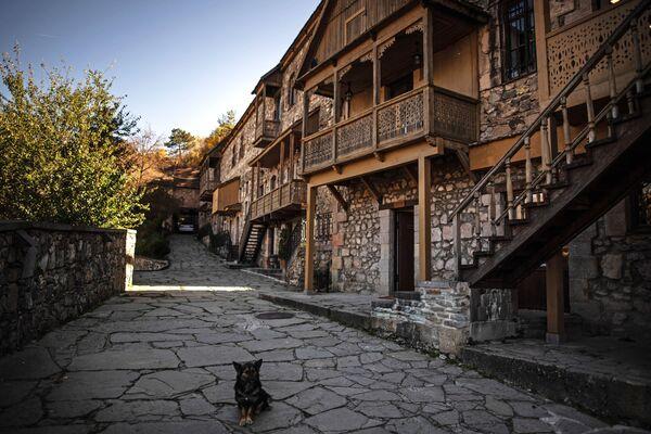 Ulica u gradu Diližan u Jermeniji. - Sputnik Srbija