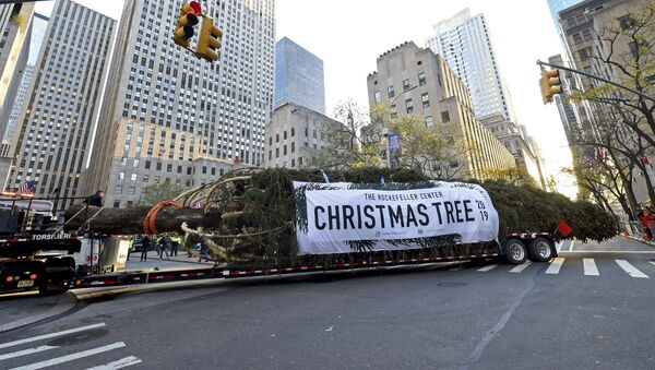 Postavljanje novogodišnje jelke ispred Rokfelerovog centra u Njujorku - Sputnik Srbija