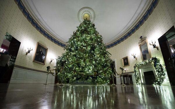 Novogodišnja dekoracija Bele kuće  - Sputnik Srbija